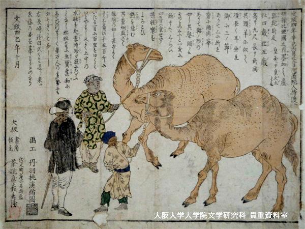 「長崎渡来駱駝図」